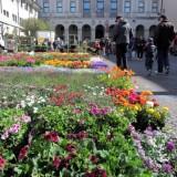 CIVIDALE - Festa di primavera