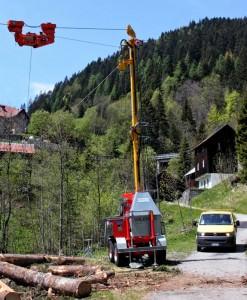 Cantiere boschivo a Collina