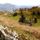 drenchia monte kolovrat fortificazioni