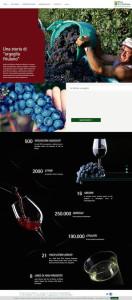 Nuovo-sito-web-Vini-La-Delizia-1