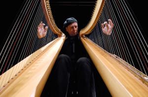 Zitello Double Harp -1Danilo CODAZZIi