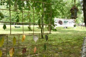 humus park foto Simonella